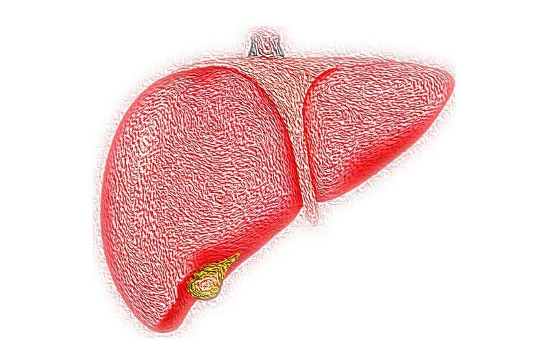 Новая высокоэффективная иммунотерапия против гепатита В