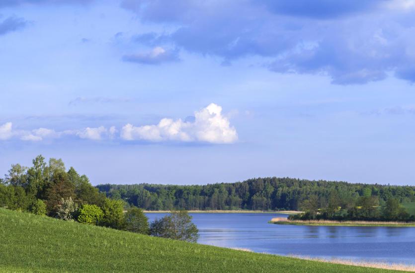 Коттеджи у озера – идеальное место для отличного отдыха